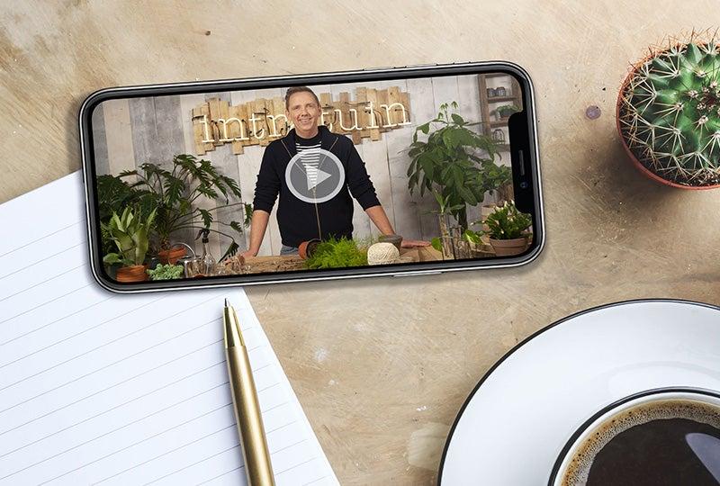 Gratis online kamerplantencursus
