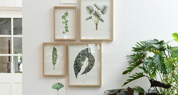 Gratis plantenprenten