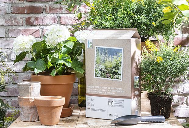 Plantenvoeding voor tuinplanten