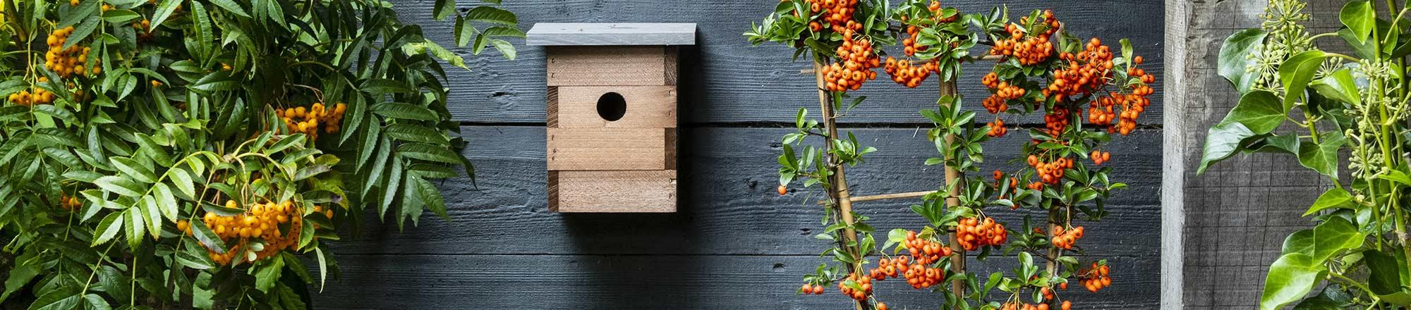 Vogelhuisje of nestkastje in de tuin