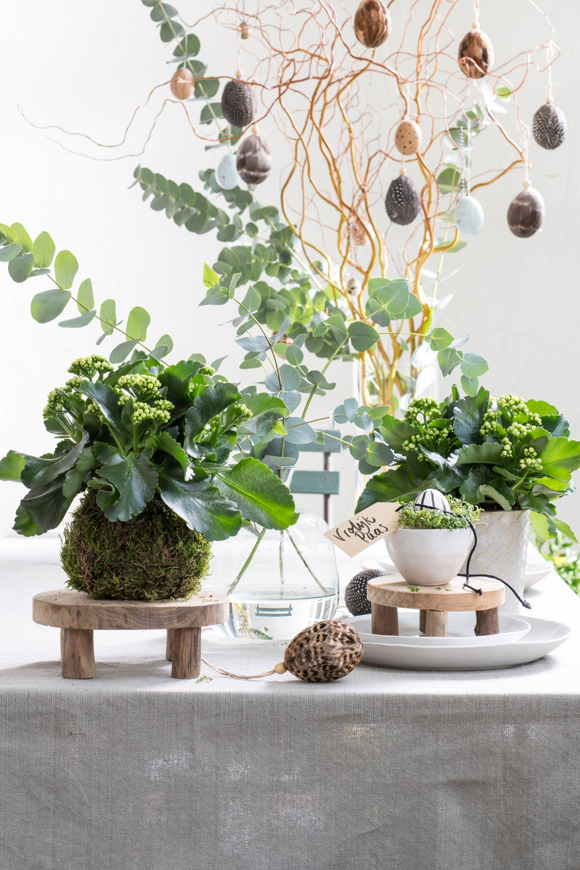 Groene tafel paasdecoratie