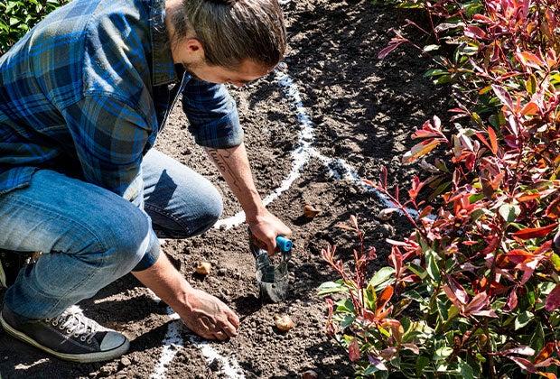 Blog: 7 Aanplant tips voor het najaar