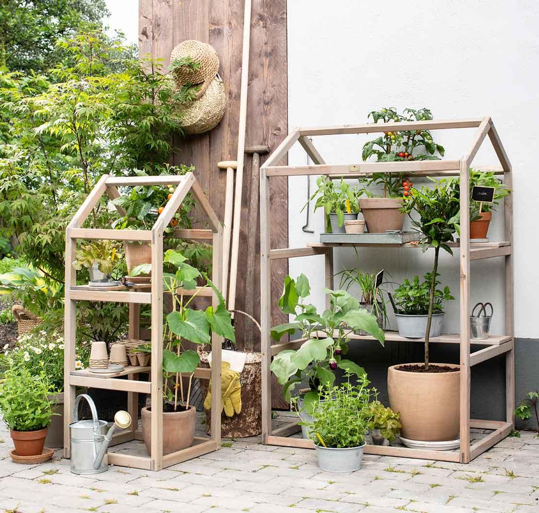 Houten rekken met groenteplanten en kruidenplanten
