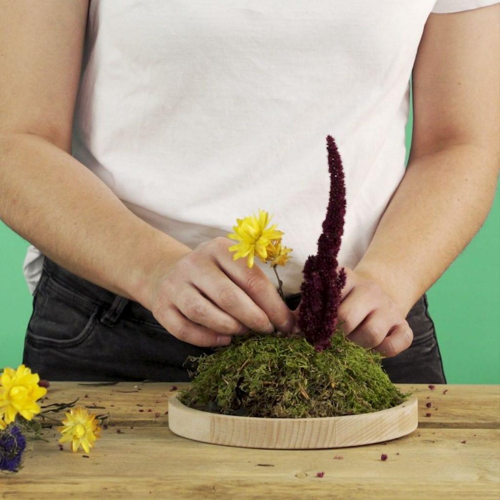 DIY Droogbloemen onder een stolp, doorbloemen insteken