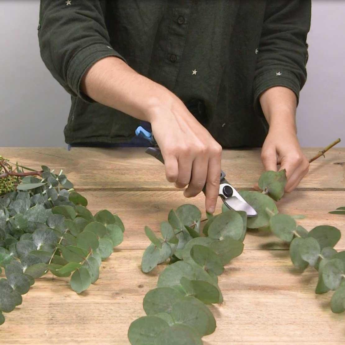 DIY Eucalyptus krans stap 1: Eucalyptus knippen