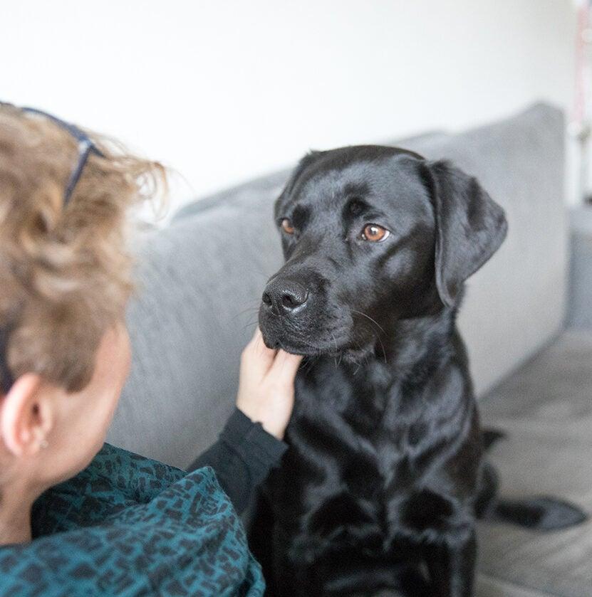 Knuffelen met de hond