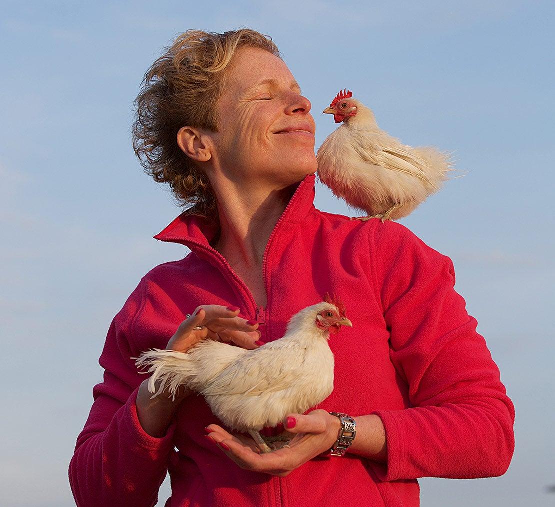 Knuffelen met kippen