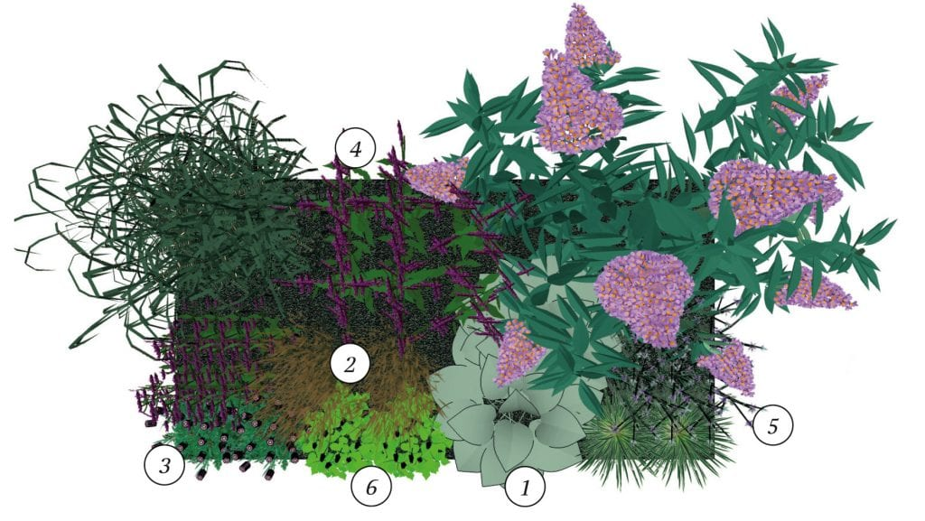 Insectenborder beplantingsplan
