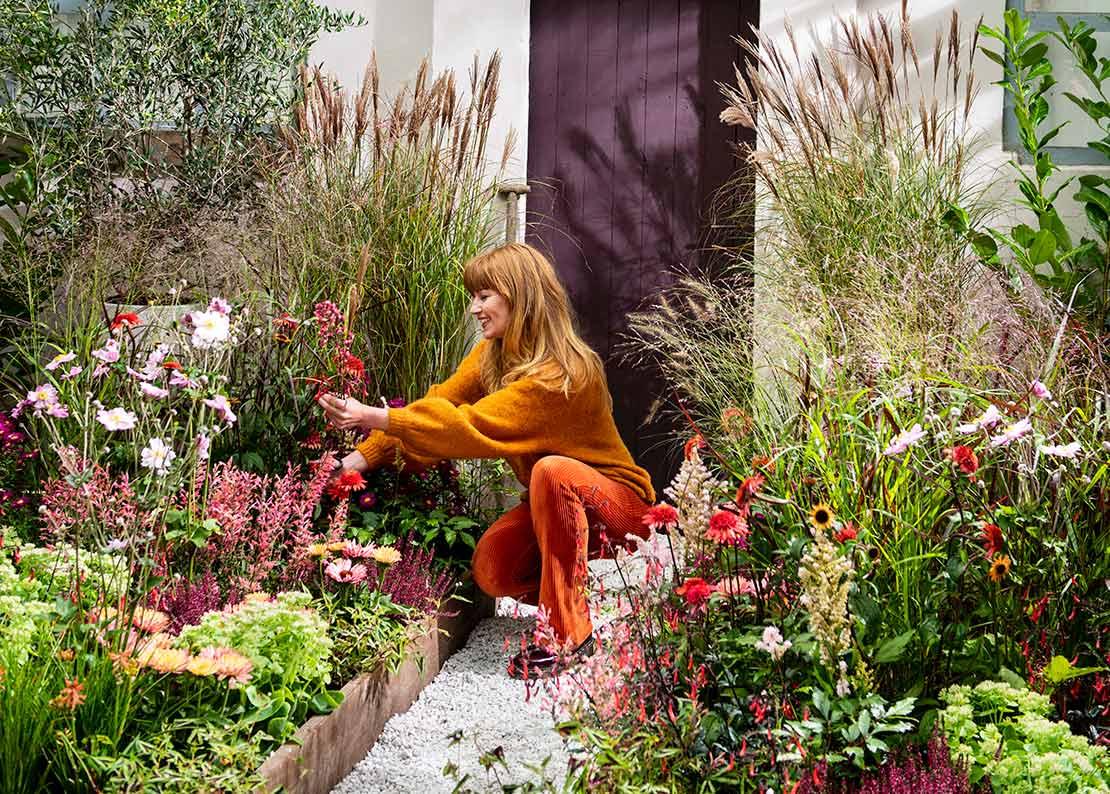 Tuin in het najaar