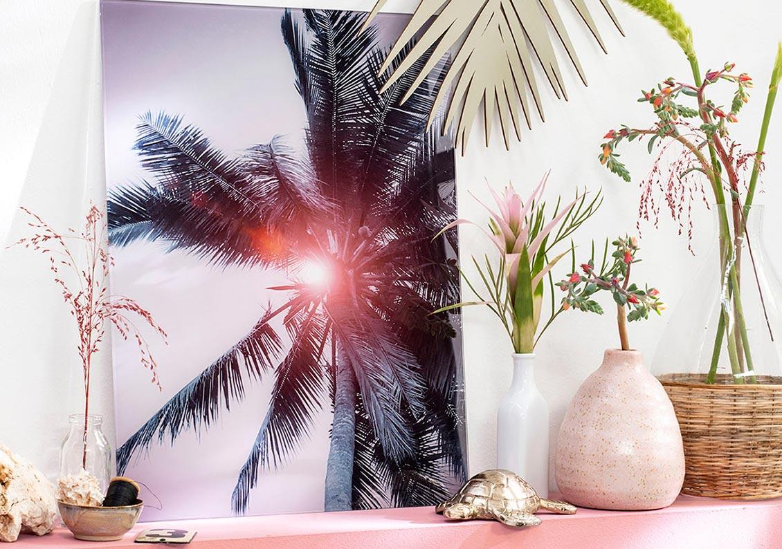 Bloeiende kamerplanten stijl summer breeze