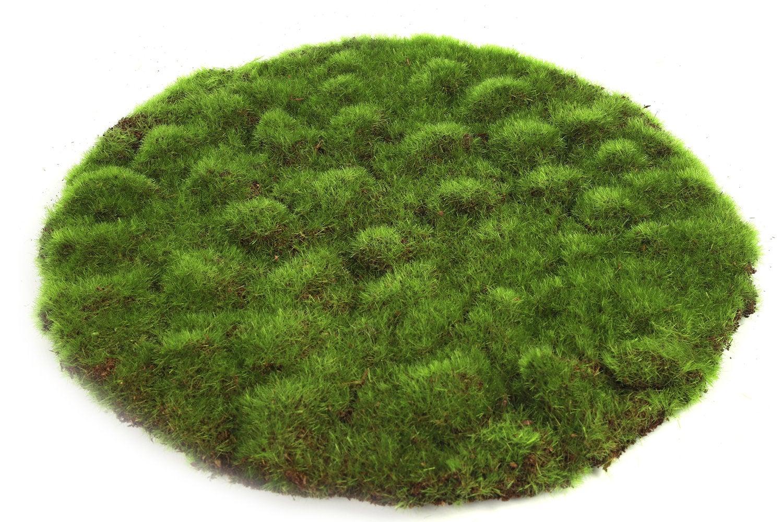 Countryfield kunstmos mat Ierland groen D 30 H 2 cm