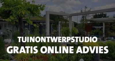 Gratis-online-advies-–-Tuin-ontwerp-studio-