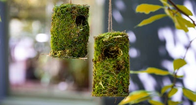 Kids:-vogelnestje-bouwen