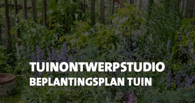 Online-advies:-beplantingsplan---Tuin-ontwerp-studio