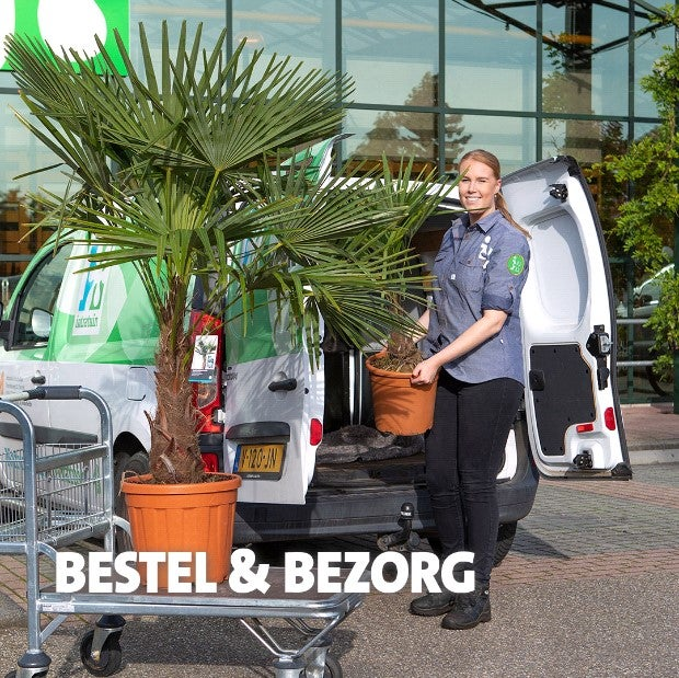 Bestel & service